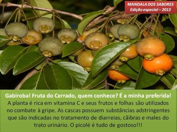 Gabiroba 1