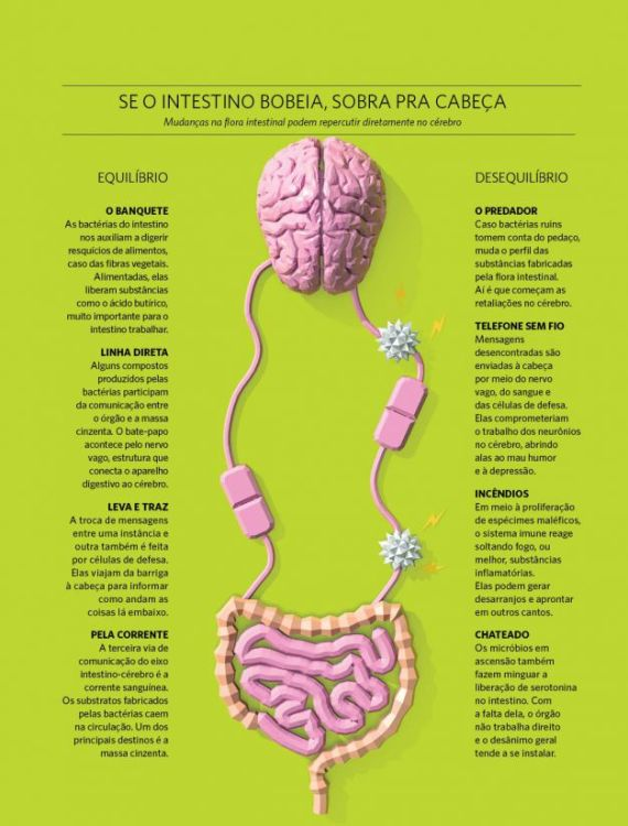 quadro-conexao-cerebro-intestino